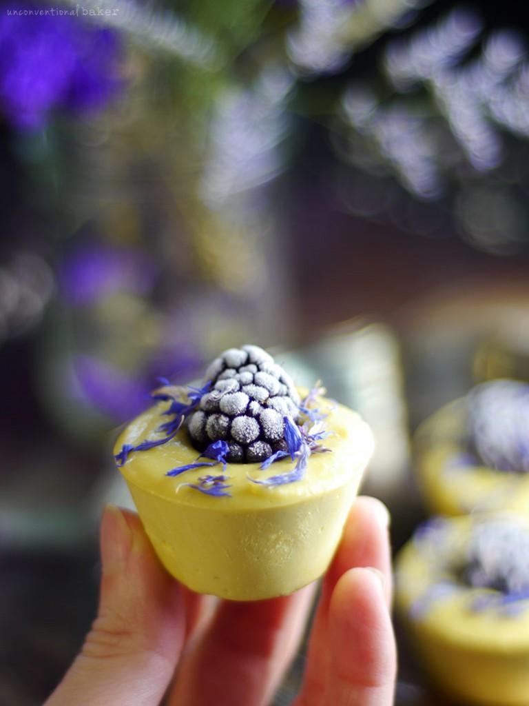 raw-blackberry-lemon-cheesecake-bites-dairy-free-gluten-free-refined-sugar-free-grain-free